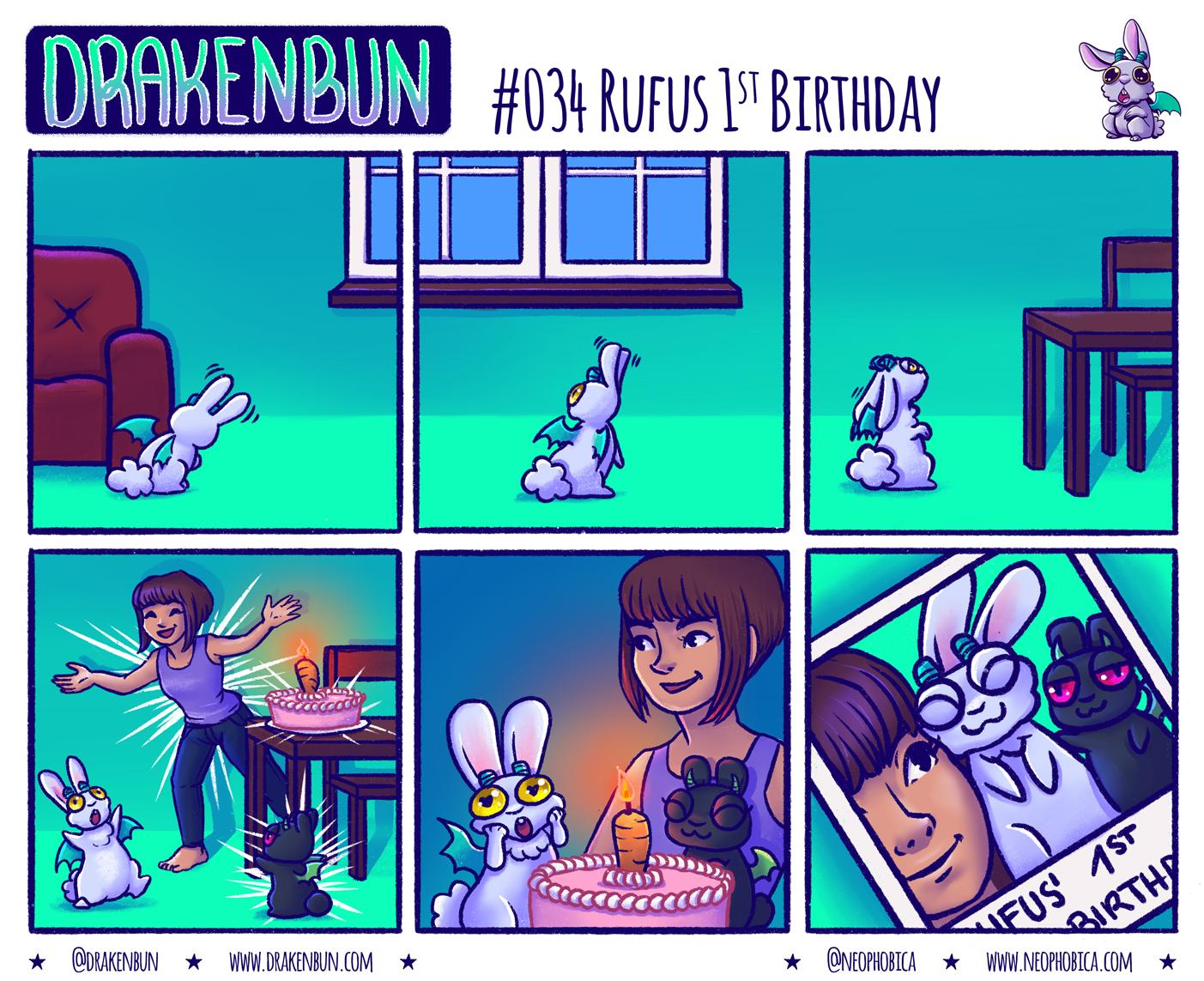 #034 Rufus 1st Birthday