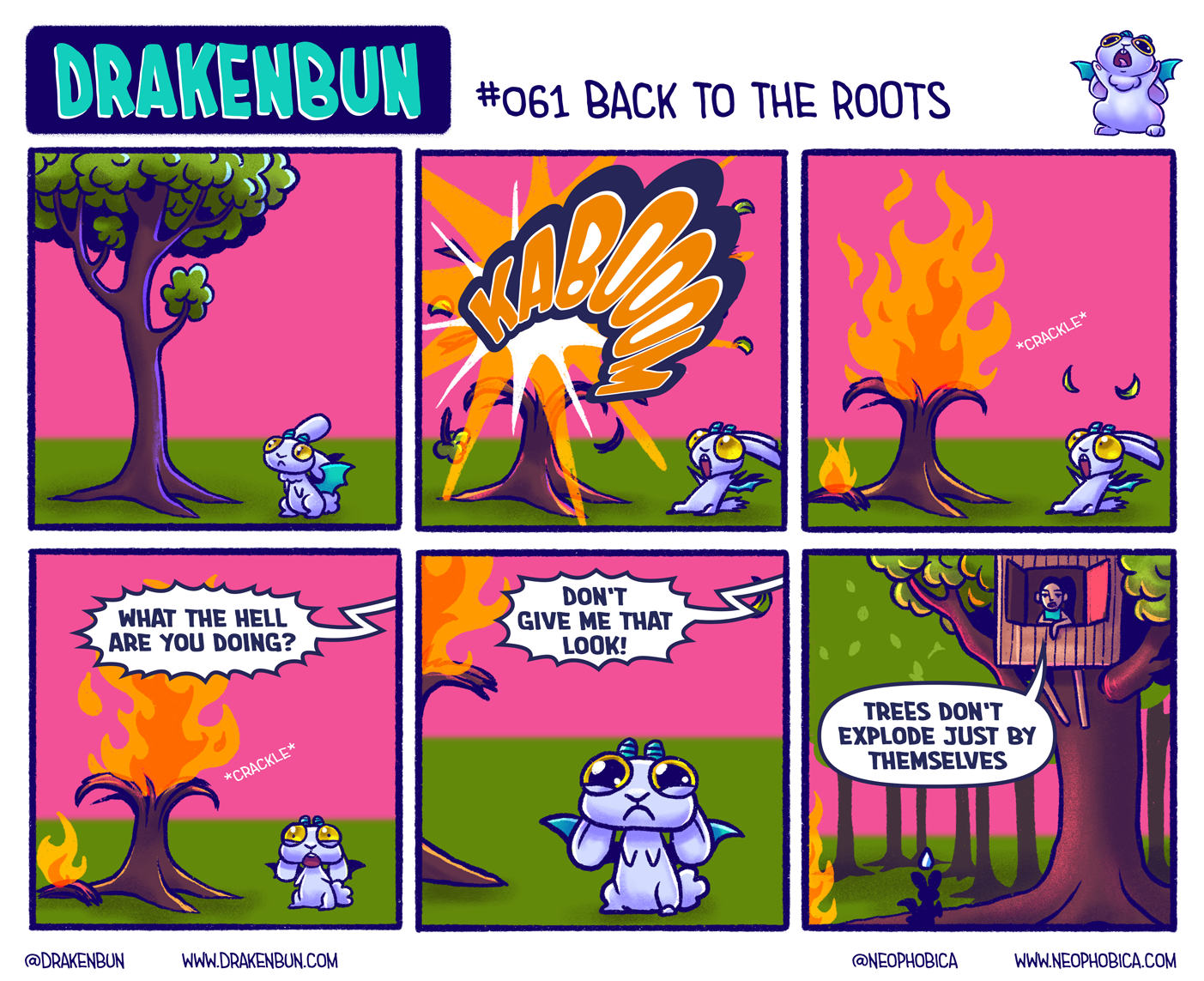 #061 Back to the Roots